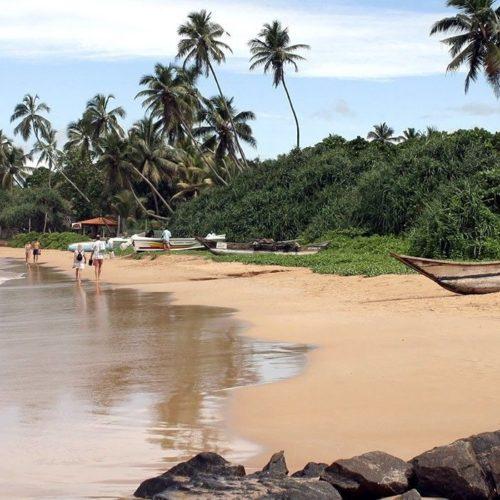 Resplendent Island